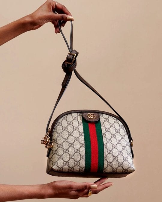 Gucci 101: The Ophidia Collection