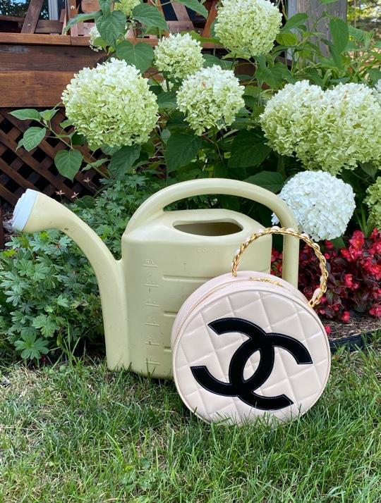 Top 5 Rare Chanel Bags