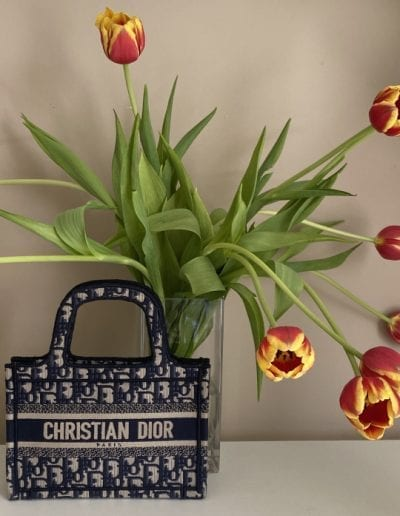 Dior 101: The Book Tote