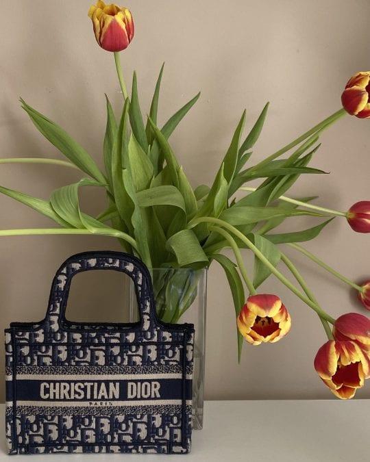 Dior 101: The Book Tote