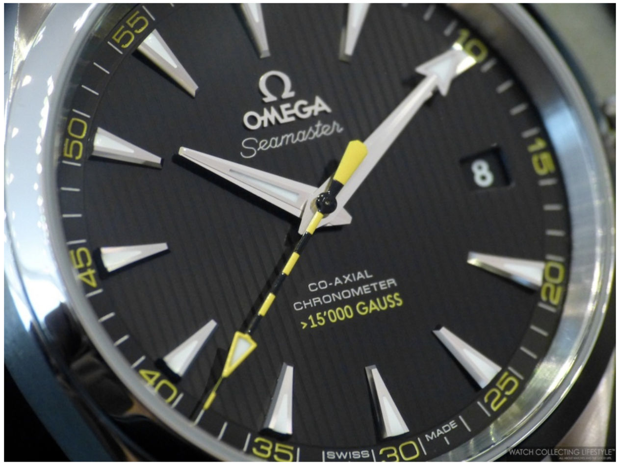 The Omega 231.10.42.21.01.002 watch.